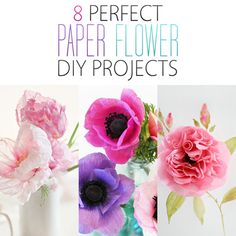 If you want to add some gorgeous blooms into you life and home decor...check out this collection of 8 Perfect Paper Flower DIY Projects! GORGEOUS!!!!