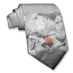Shopping for customizable Black ties is easy on Zazzle. Browse through our thousands of designs or design your own necktie. Black Tie, Black And White, Design Your Own, Floral Tie, Strawberry, Boys, Sexy, Style, Baby Boys