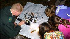 Op zaterdagavond 24 oktober kun je om 19.30 uur de avond komen proeven in het Bos, tijdens de Nacht van de Nacht.