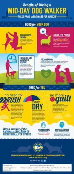 10 Best Dog Walking Business Ideas Dog Walking Business Dog Walking Pet Sitting Business