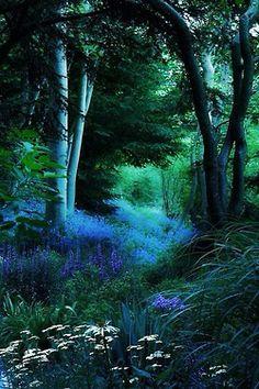 ciorsdan:  Rhapsody in blue….