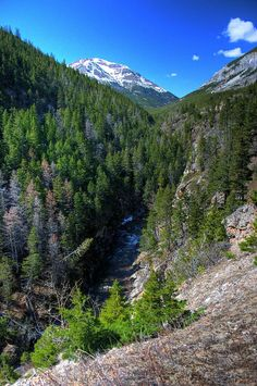 Cameron Creek, Waterton Lakes National Park, Alberta, Canada