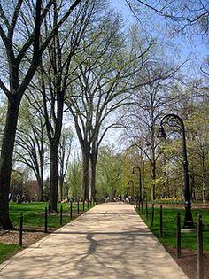 Penn State University!