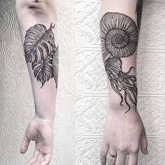Ammonite and Palm Leaves for Lindsay's Pre-Historic Sleeve #tattoo #black #blacktattoo #blackworker #illustration #btattooing #nyc #brooklyn