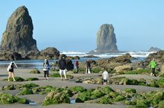 The Needles next to Haystack Rock at Cannon Beach on the Clatsop County  Terry Richard/Staff