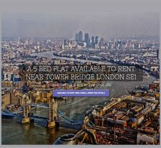 Flat to rent in London Web Site Development by Web Design Clinic