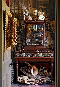 """The cabinet refers both to a piece of furniture and the setting in which these curiosities are kept."""