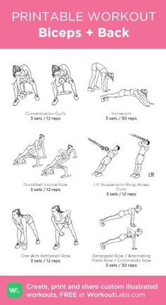 Biceps + Back: my custom printable workout by @WorkoutLabs #workoutlabs #customworkout by AudraL