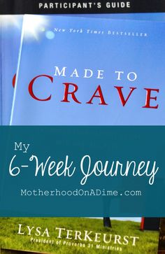 Made to Crave:  6-Week Journey/Book Study