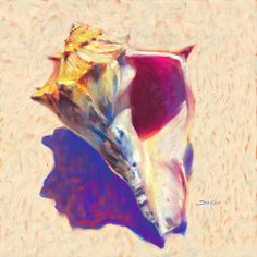 Sea Shell art print of Original Painting titled Conch Shell Study by renowned contemporary fine artist Savlen.