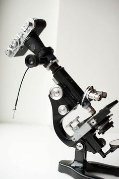 Leica If mounted on a Leitz microscope - sweet!