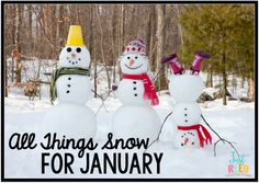 A hodgepodge of snowy lessons and freebies for January