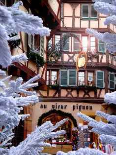 Christmas in Alsace, France: just a tad different than the strip mall down the street...