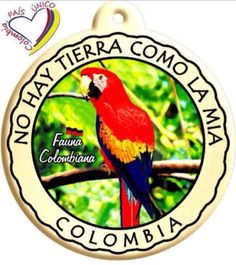Mi tierra!!!! Places In Europe, Places To Go, Colombian Culture, Trip To Colombia, Colombia South America, Exotic Places, Fauna, Vintage Travel Posters, Photo Booth