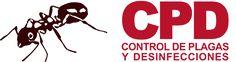 CPD Plagas - Termitas tratamiento