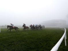 Timeform Irish SmartPlays: Saturday November 12  https://www.racingvalue.com/timeform-irish-smartplays-saturday-november-12/  Betfair, Clonmel, Down Royal, Galway, Naas, Punchestown, Thurles, Timeform, Tramore