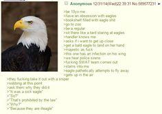 Anon loves eagles