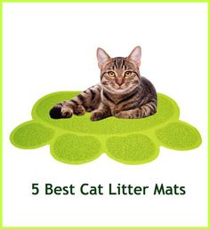 Finding used cat litter all over the house is disgusting. That's why cat owners search for a litter mat that will attract litter off their cat's feet like a magnet the second he leaves his litter box. Is there such a perfect litter mat?  Here are five that come pretty close... see more at PetsLady.com ... The FUN site for Animal Lovers