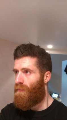 [The More It Grows, The Better It Gets.] Wow how does he do it and get the beard so nice in shape Brown Beard, Red Beard, Ginger Men, Ginger Beard, Great Beards, Awesome Beards, Beard Styles For Men, Hair And Beard Styles, Bart Tattoo