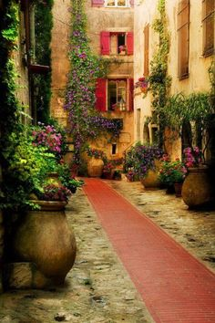 Provence, France   The Movie A Good Year is filmed here and I love that movie..