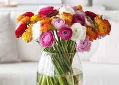 Ranunkler kommer i mange fargenyanser av rosa, orange og hvitt. Home Flowers, Table Flowers, Flower Vases, Flower Arrangements, Ranunculus, Orange, Flower Power, Glass Vase, Colours