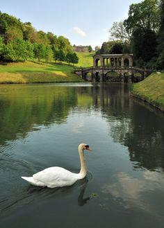Prior Park, Bath, UK (by Saffron Blaze)