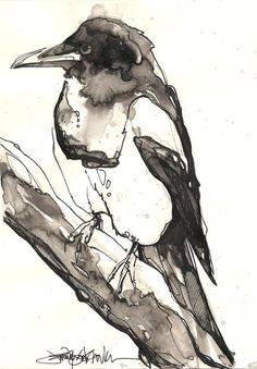 Magpies by Jennifer Kraska, via Behance Watercolor crow