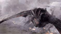 House of Drogon, Viserion, Rhaegal and their Mother Daenerys Targaryen. Drogon Game Of Thrones, Game Of Thrones Books, Game Of Thrones Dragons, Got Dragons, Mother Of Dragons, Queen Of Dragons, Dragon Tales, Dragon Art, Game Of Trones