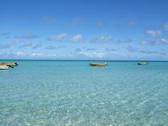Boats chillin.  Oh Lizard Island, Australia, how I miss you ...