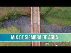 Como Sembrar Agua - TvAgro por Juan Gonzalo Angel - YouTube Youtube, Signs, Bb, Videos, Go Green, Courtyards, Green Houses, Bricolage, Shop Signs