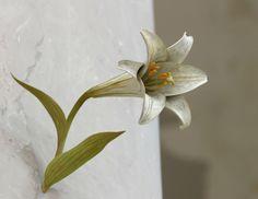 Yoshihiro Suda's lifelike flowers will bloom in the Asian Art Museum's galleries