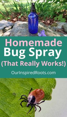 Homemade Cleaning Supplies, Cleaning Tips, Bug Bite Treatment, Homemade Bug Spray, Keep Bugs Away, Cleaners Homemade, Diy Cleaners, Natural Pesticides, Essential Oil Uses