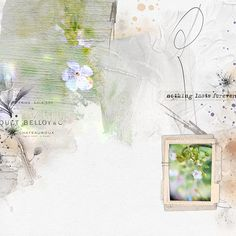 PGD_BlossomPapers, PGD_BlossomBrushes, SI_Remenisce_Stacked Frames, SI_Remenisce_Elements (all part of the DutchChoice June 2017 on Digiscrap, Photography Ali Bakker
