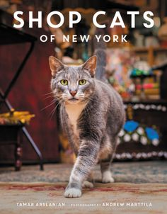 Catladyland: Cats are Funny: Review: Shop Cats of New York