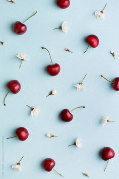 Cherry background by Ruth Black - Background, Cherry - Stocksy United