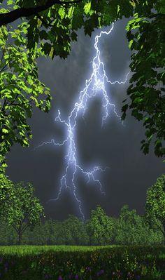 Forest lightning