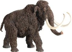 Woolly Mammoth (The Carnegie Collection)+at+theBIGzoo