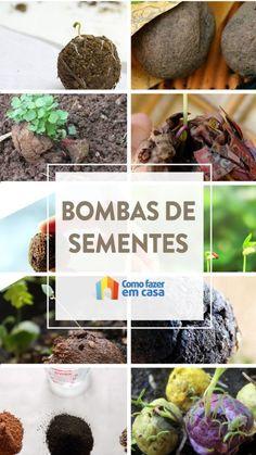 Bombas de sementes - sement bombs | Como fazer em casa Acerola, Diy, Garden, Small Space Gardening, Hydroponic Gardening, Indoor Gardening, Seed Bombs, Flower Arrangements, Floral Arrangements