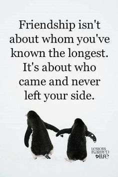 Agree? my best friends are Karen, and Gylian they have never left my side even if me and grace start fighting there always on my side. Thank you.