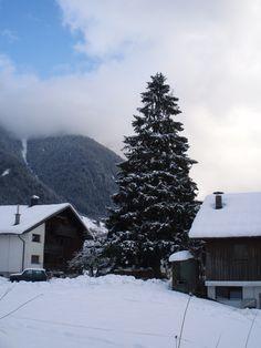 Auf Besuch in Österreich