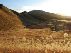 奈良県曽爾村の曽爾高原は奈良と三重の県境に広がる高原でハイキングスポットとして人気があります 秋にはススキが一面を覆い高原全体がまるで銀色の海のようになって見ごたえがありますよ ぜひ一度見て頂きたい光景です tags[奈良県]