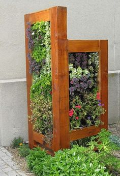 A Vertical Garden to cover ugly things in the backyard... this one is covering garbage cans