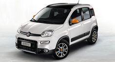 Fiat Panda 4×4 Antartica