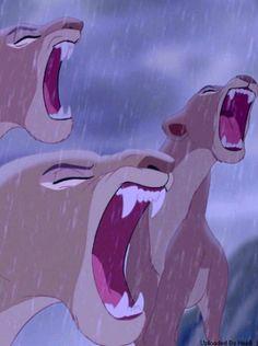 roaring lioness - roaring lion + roaring lion tattoo + roaring lion drawing + roaring lion tattoo for women + roaring lion photography + roaring lion logo + roaring lion sketch + roaring lioness Disney Pixar, Arte Disney, Disney And Dreamworks, Disney Magic, Disney Art, Le Roi Lion 1, Le Roi Lion Disney, Disney Lion King, Lion King 3