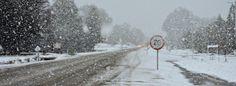 Diario 7 Lagos » Espectacular nevada en Villa La Angostura. Ver fotos