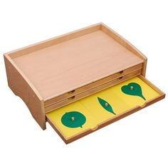 Kid Advance - High Quality Montessori Materials For Less Botany Leaf Cabinet with Insets