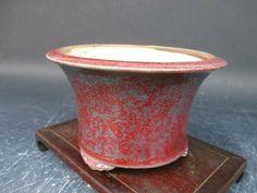 "Bonsai Pot ""Eimei"" from Established Bonsai Garden   eBay"