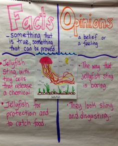 Facts and Opinions based on non-fiction text about jellyfish.