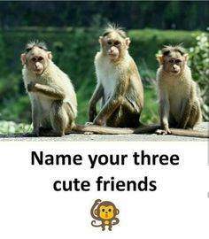 Sanjana,Amrita and Vrushti Bff Quotes Funny, Happy Girl Quotes, Besties Quotes, Crazy Girl Quotes, Girly Quotes, Funny School Jokes, Some Funny Jokes, Funny Facts, Miss My Best Friend
