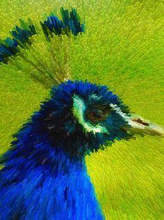 I uploaded new artwork to fineartamerica.com! - 'Peacock' - http://fineartamerica.com/featured/peacock-lanjee-chee.html via @fineartamerica